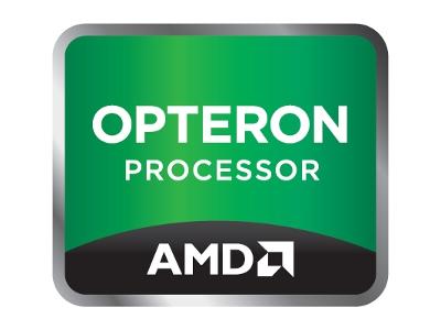 Opteron Processor AMD